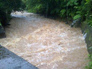 flooding3