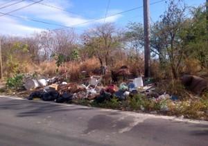 Garbage along the road in Salisbury