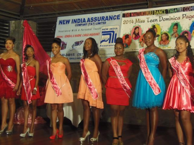 2014 Teen Pageant contestants