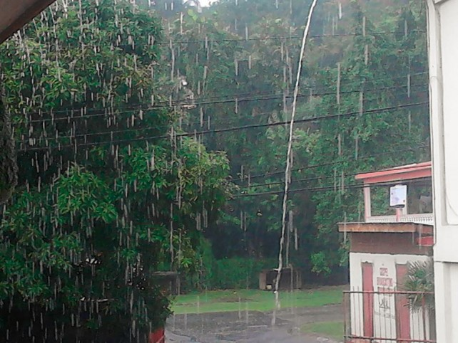 Dominica reported record rainfall during Erika