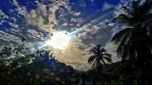 PHOTO OF THE DAY: Morning has broken