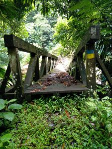 PHOTO OF THE DAY: Broken Bridge