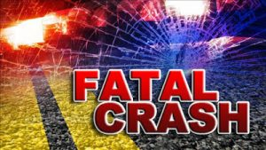 Police investigate fatal road accident in Pottersville