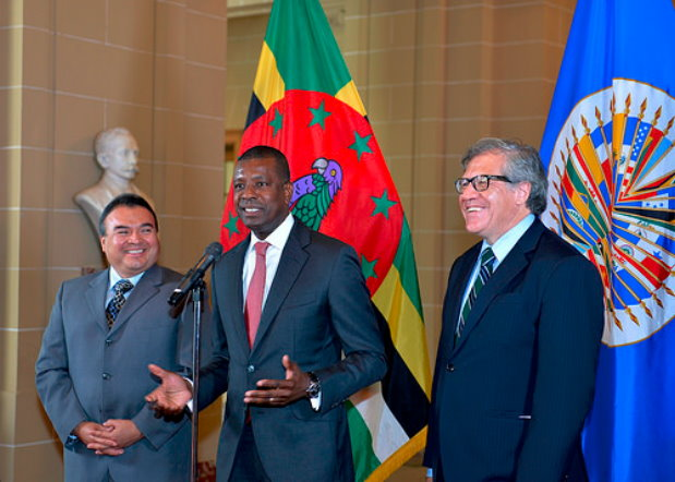 Dr. Henderson during presentation of credential at OAS. Photo: OAS