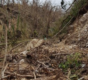 Hurricane Maria triggers close to 10,000 landslides in Dominica – study