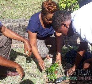 Dominican public urged to participate in tourism development