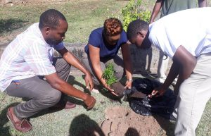 Ministries of Tourism and Agriculture promote tree planting
