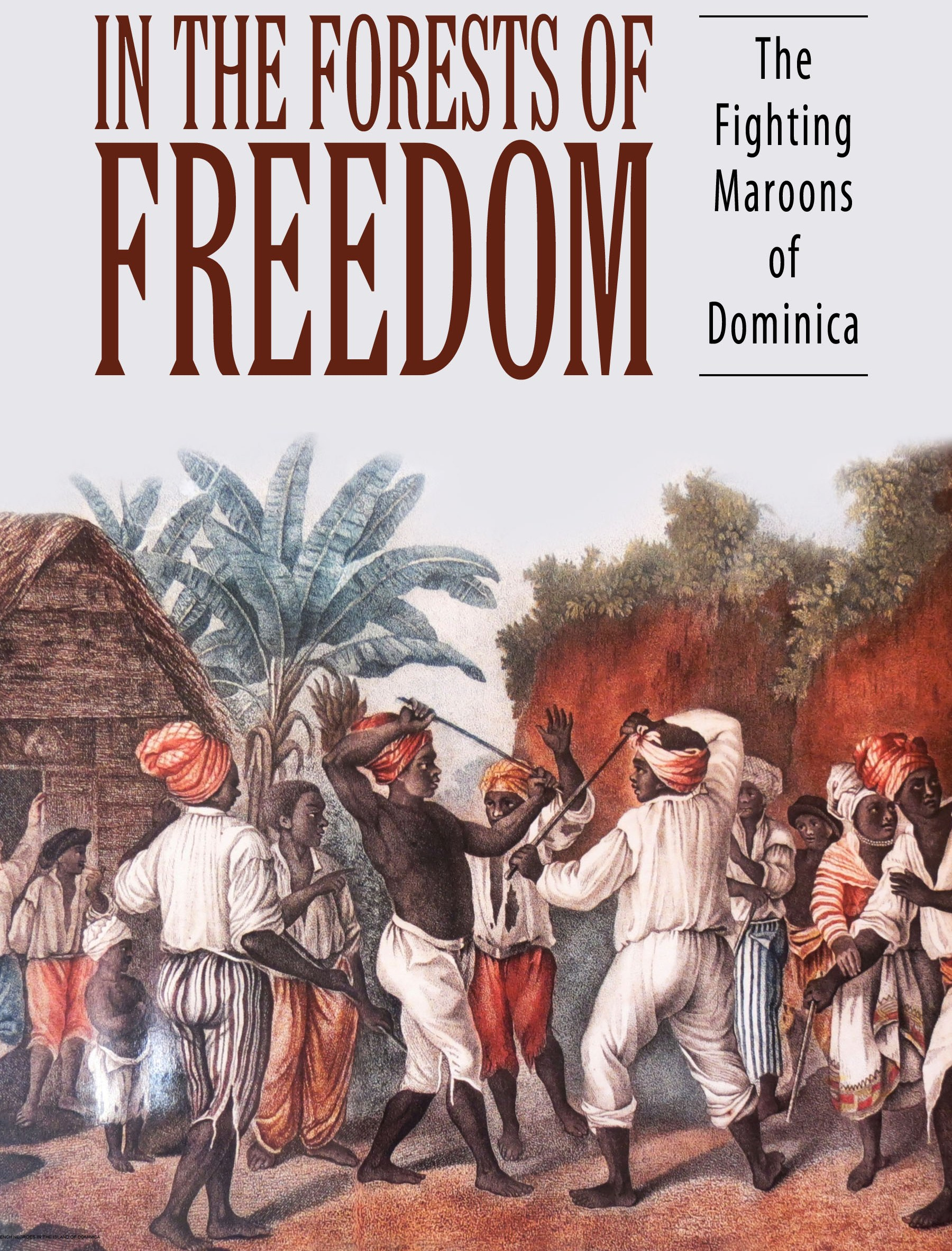 US University buys rights to Dominica book