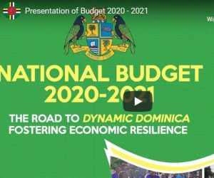 LIVE: National Budget debate 2020-2021 continues