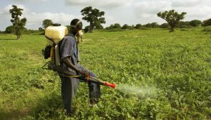 Pesticide Awareness Week observed in Dominica from September 27-Oct 3, 2020