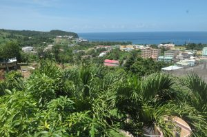 COVID-19: From the aircraft to quarantine, my experience in Dominica  – Marie-Therese Junkere