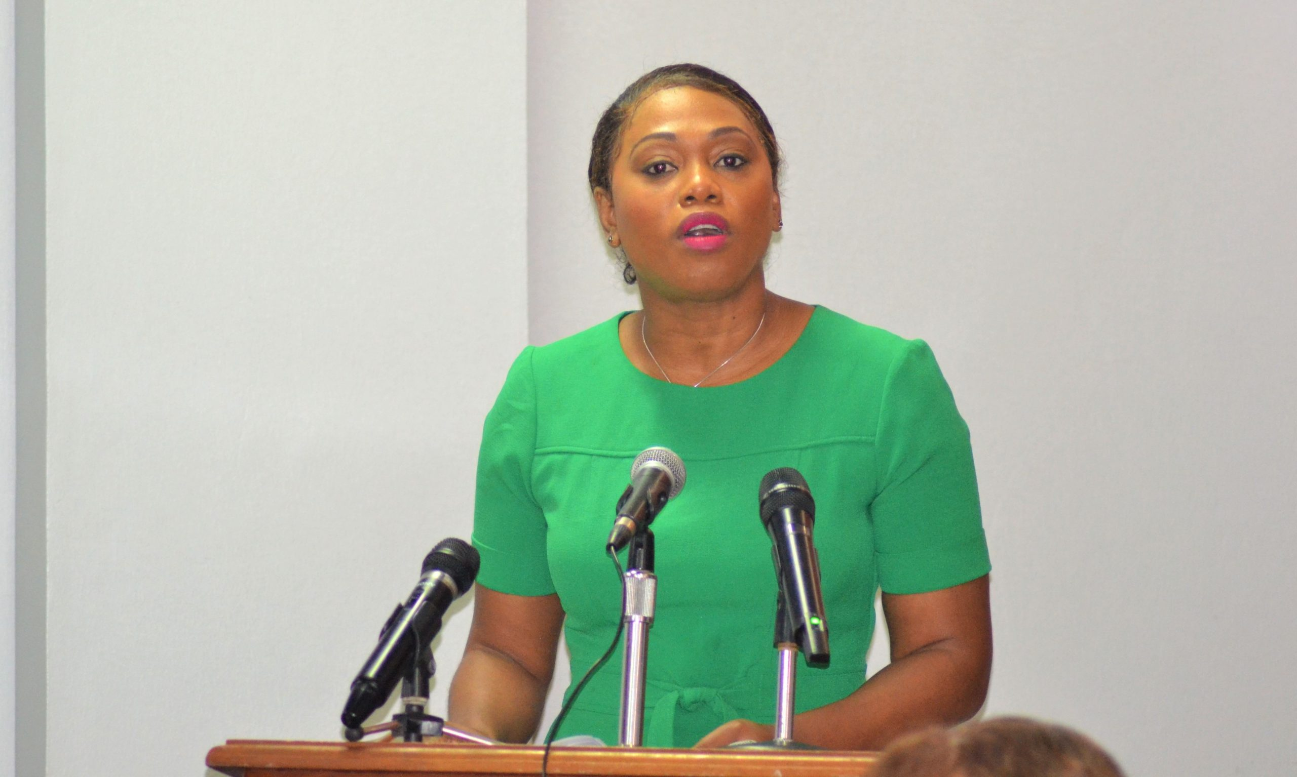 New strategies for Community Tourism in light of COVID pandemic – Dominica News Online