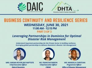DAIC & DHTA urge private sector to build resilience by enhancing security