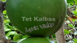 Gregory Rabess releases new single: Tèt Kalbas