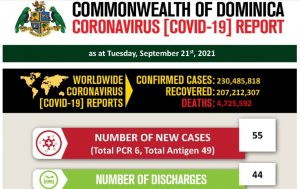 COVID-19 statistics for Dominica as of 21st September 2021 (11 deaths)